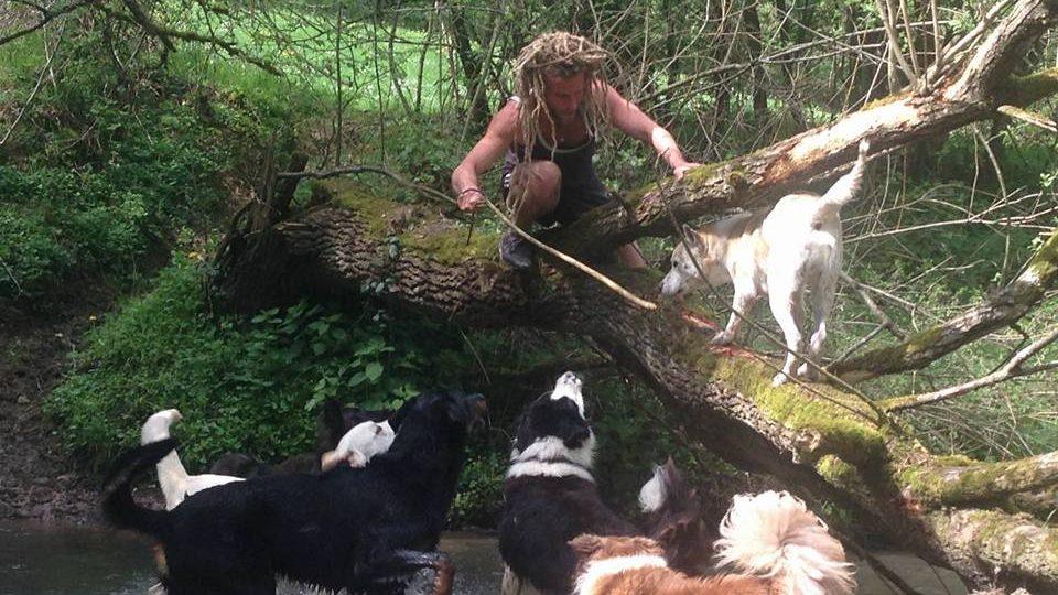 avontuurlijke dagopvang voor uw hond