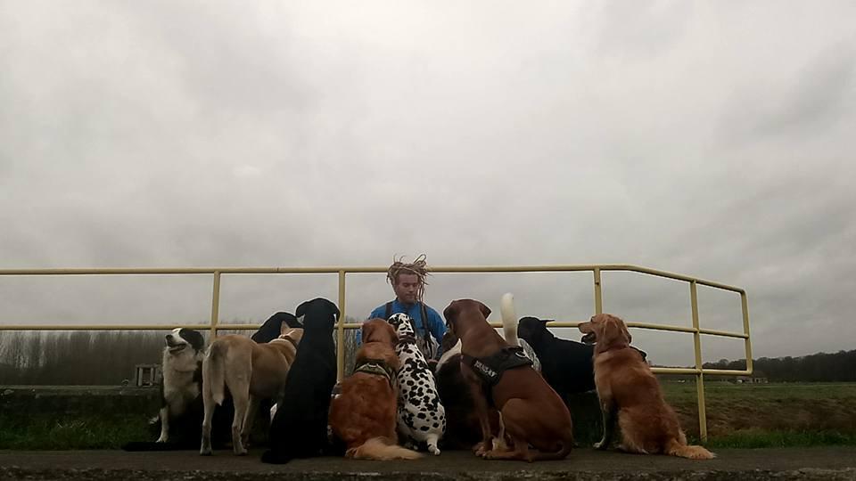 gedragsbegeleiding en opvoedingsondersteuning voor uw hond